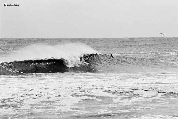 E's Surf Report